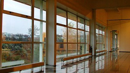 Interior windows of office building, tinting by Sunshine Control
